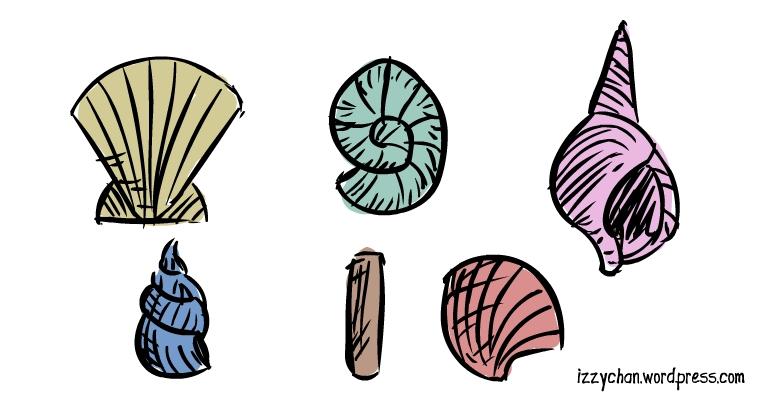 seashell types