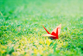 Open my wings and I'm going to fly | by ★.stellar.★