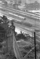 SMC Pentax-M 135mm f/3.5