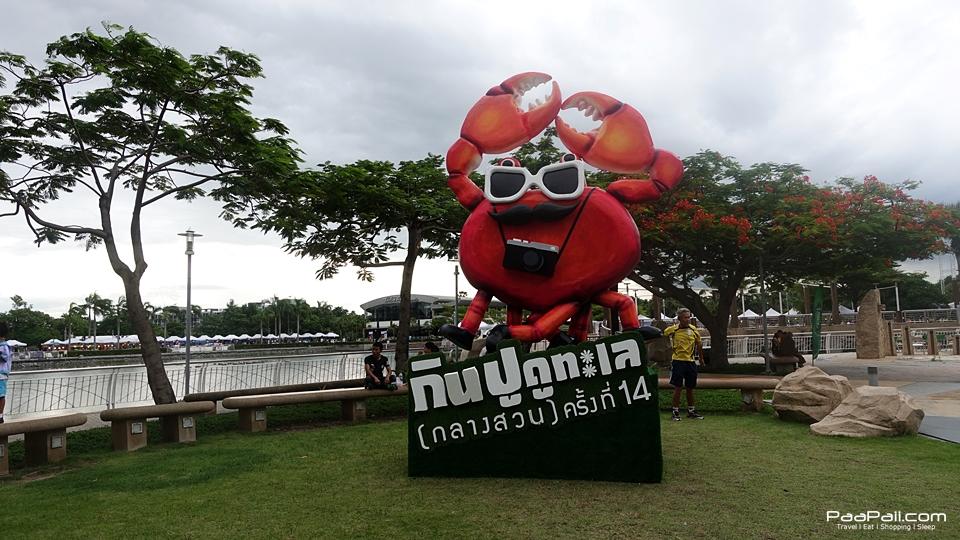 festivals (5)
