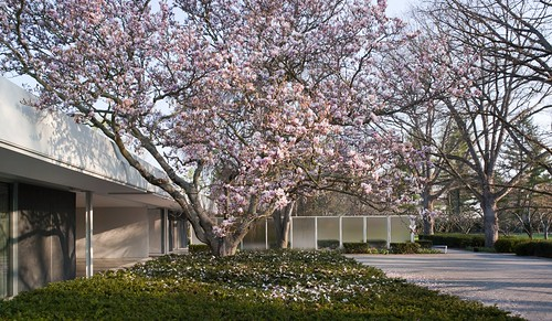 Spring at the Miller House | by IMA - Indianapolis Museum of Art