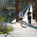 Save Our Swinging Bridge footrace