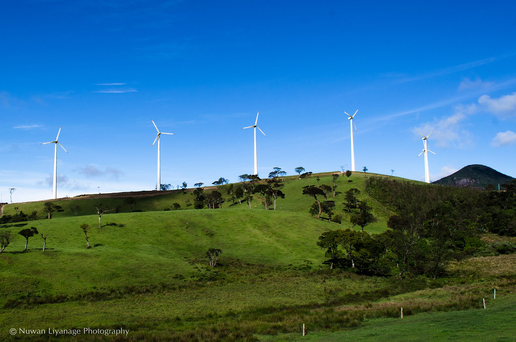 Windmills At Nuwara Eliya
