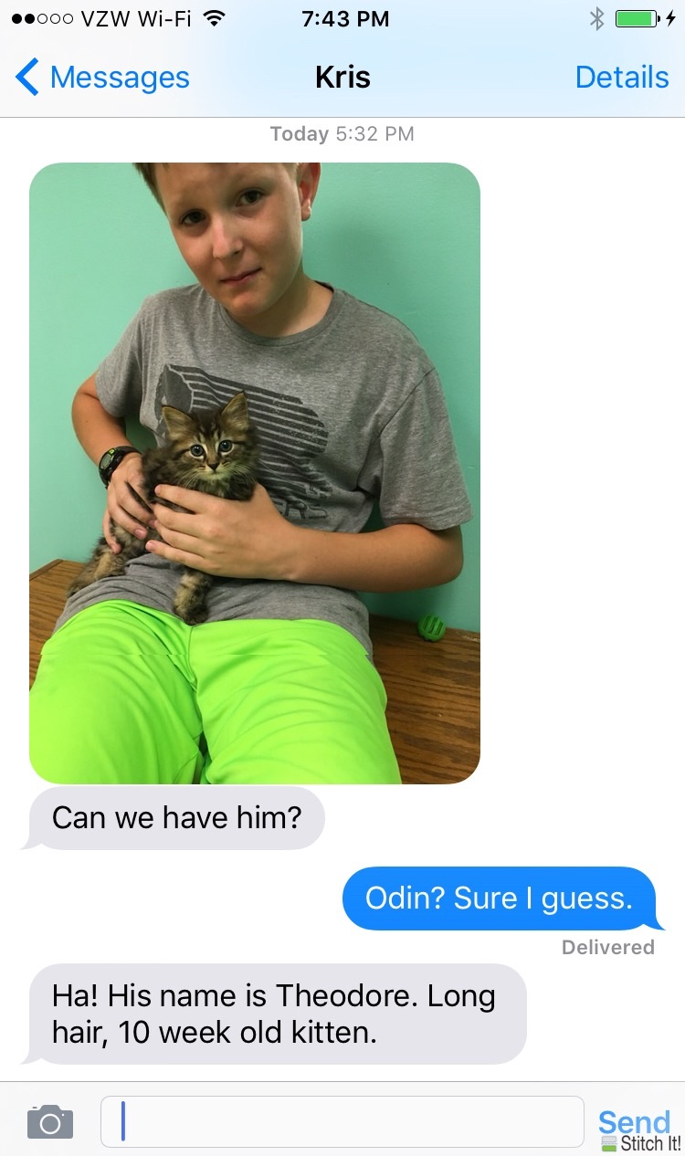 day 4373:  kris and odin visit the local animal shelter without me.