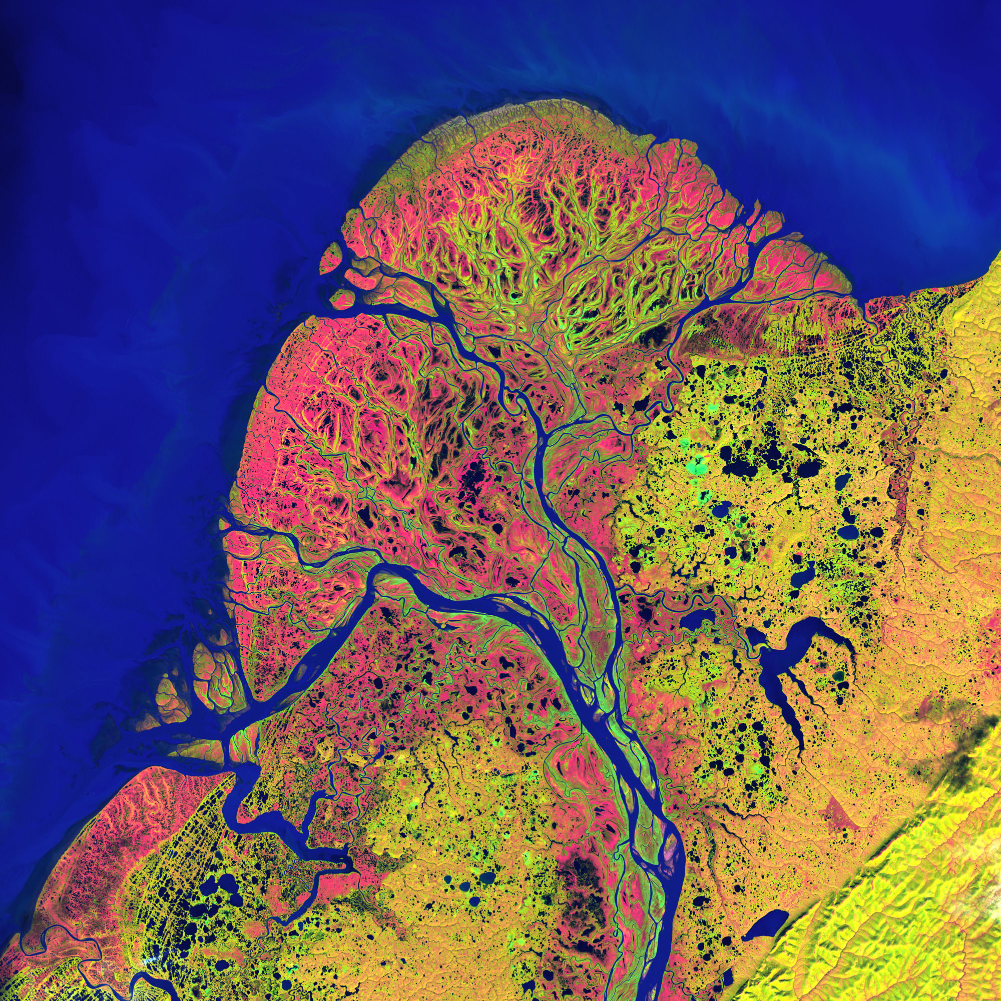 Earth from Space: Yukon Delta by NASA
