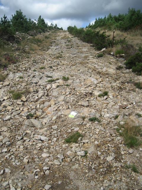 Subida por el cortafuegos en la ruta dos ríos de Vilacoba e San Xusto