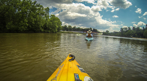 Goat Island in the Broad River-182