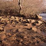 Chattahoochee River winter 1.jpg