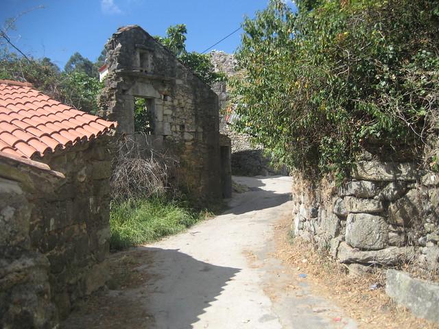 Mosquete en el PR-G 146 Ruta Ambiental Castelo de Vitres