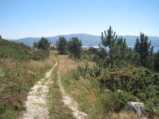 Pista Forestal en la Subida á Pedra do Cadro en Esteiro