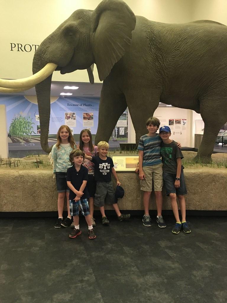 Kids at Bean Museum