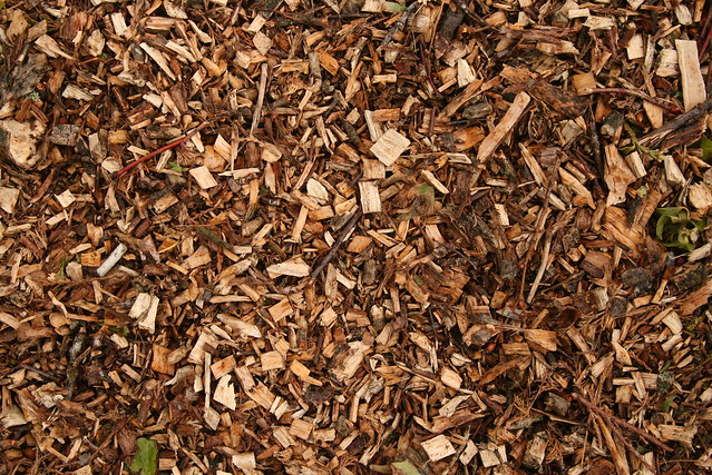 Bark used for landscape surfacing and mulching