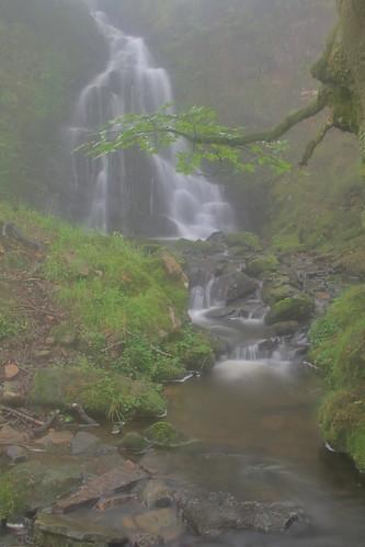 Parque natural de #Gorbeia #Orozko #DePaseoConLarri #Flickr -094