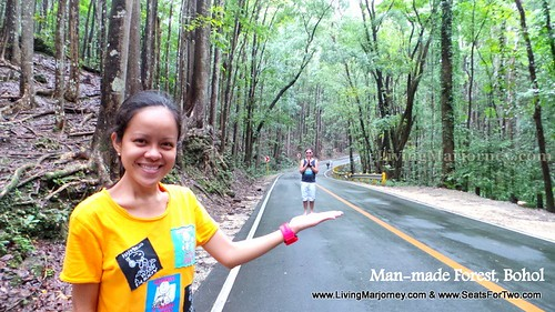 Bilar Man Made Forest, Bohol