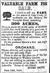 Moses Smith Farm for Sale, Asheville News (Asheville, North Carolina), Thursday, 21 August 1856, Page 1