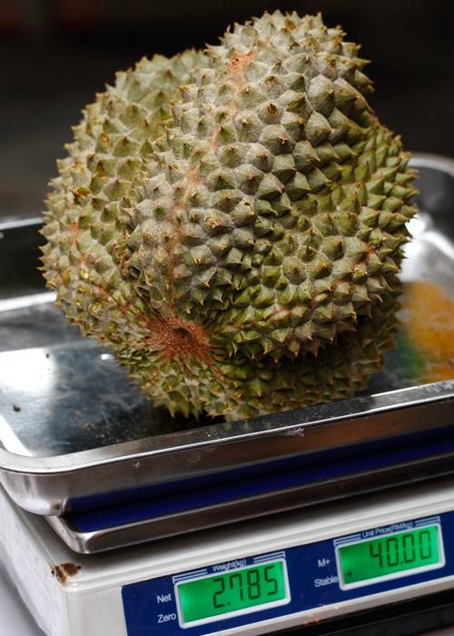 Black Thorn Durian Fruit