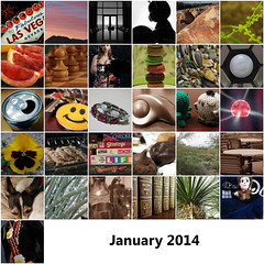 2014:365 January Mosaic by Elle.365