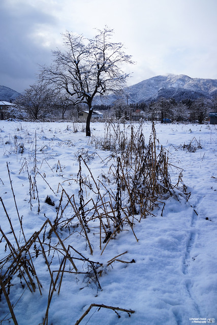 2016_Winter_Tohoku_Ep7-3