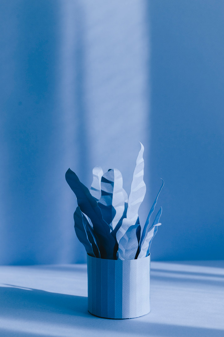 diy-blue-paper-plants-fin-05