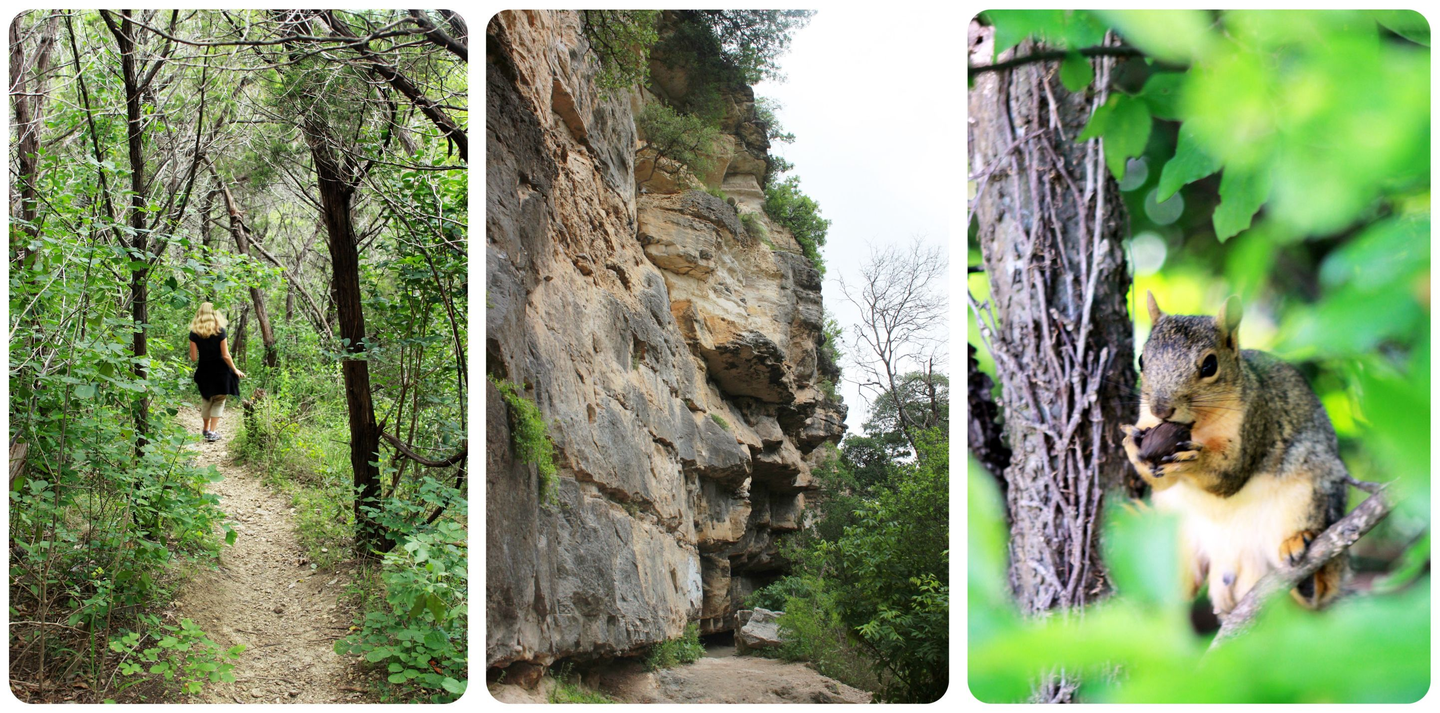austin nature trails texas