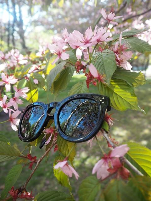 celinepreppysunglassesP5124985,candygirlcherryparkP5124886candygirlcherrytreeparkP5124953,candygirloutfitP5124939, candy girl, pink, light pink, vaaleanpunainen, takki, pink coat, japanese style garden, japanilaistyylinen puutarha, roihuvuori, helsinki, suomi, finland, asukuvat, outfit pictures, muoti, fashion, cherry trees, kirsikankukkapuut, kirsikkapuut, kukat, flowers, blossom, pastellin värinen, pastel color, cherry park, kirsikka puisto, kiriskankukka puut, pink jacket, may, toukokuu, spring, kevät,  vaaleat pitkät hiukset, blond long hair, celine sunglasses, celine preppy, celine sunnies, mustat, black,