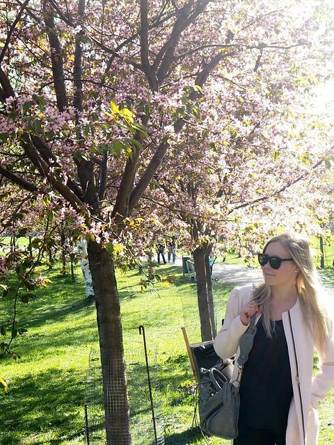 candygirlcherrytrees2,candygirlcherrytreepark2P5125066, cherry park, helsinki, suomi, finland, roihuvuori, kirsikkapuisto, cherry tree park, kirsikkapuu puisto, blossom, kukinta, sakura, itä-helsinki, east helsinki, lovely, ihana, green, pink, vihreä, pinkki, sun, aurinko, flowers, kukat, blossom, kukinta, may, toukokuu, kevät, spring, vaaleanpunainen, takki, coat, light pink, pale pink, cherry blossom girl, kirsikankukka tyttö, nature, luonto,