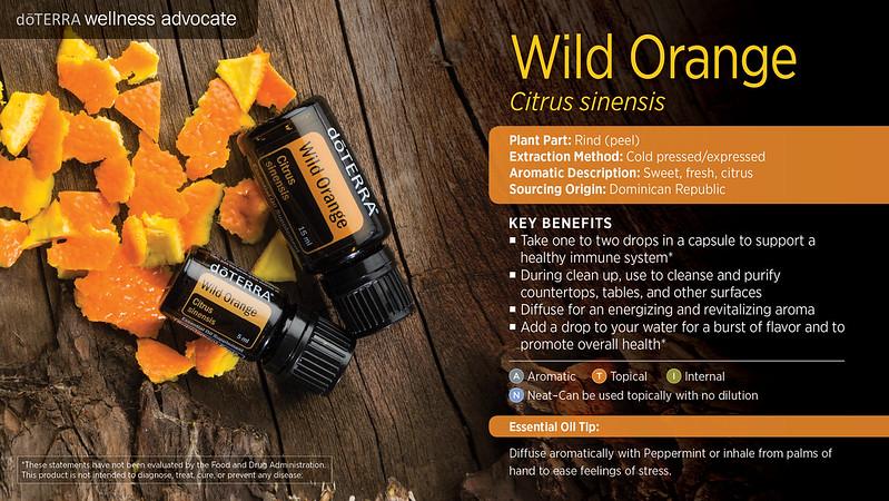 doTerra_Wild_Orange