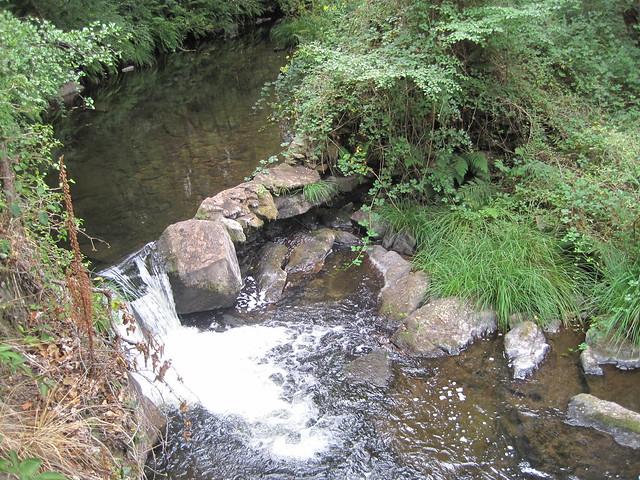 Río Mera de la senda botánica del río Mera