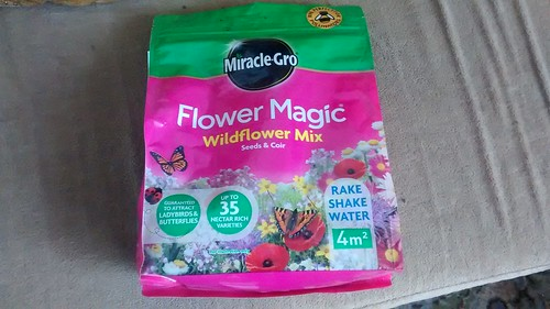 Wild flower seeds Miracle Gro June 16