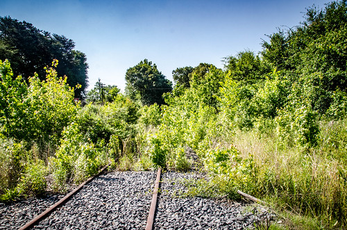 Cherokee County Swamp Rabbit Railroad-23