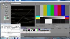 VEGAS 13: 32bits niveau vidéo 16 -235 by Panurus biarmicus