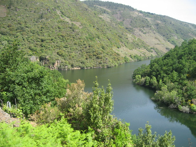 Río Mao y río Sil en Parada de Sil