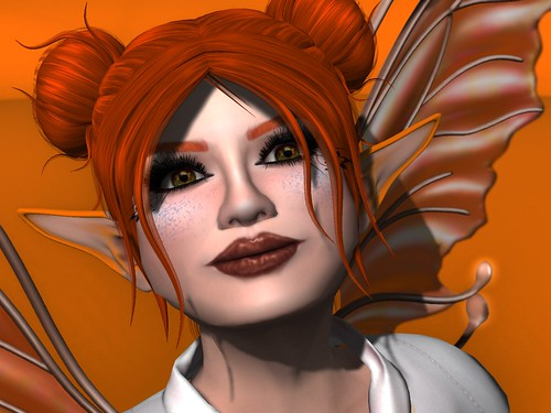 Cosmetics Fair: Orange