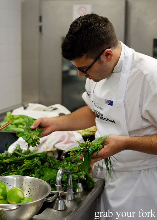 Troy Crisante from Bennelong Restaurant, Sydney selecting herbs at the Appetite for Excellence Young Chef of the Year 2016 final cook off