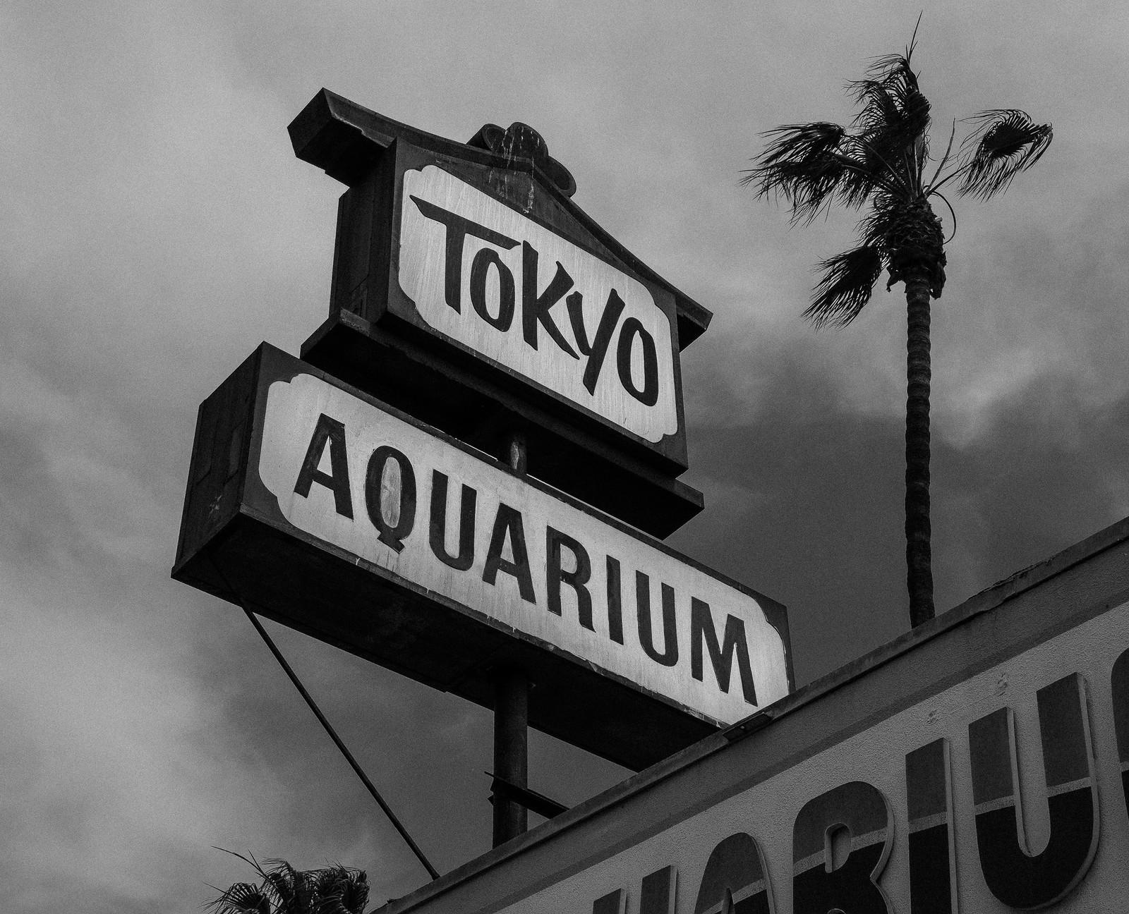 Tokyo Aquarium | by michaelj1998