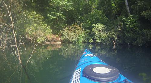 Lake Jocassee Kayaking-50