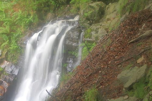 Parque natural de #Gorbeia #Orozko #DePaseoConLarri #Flickr -113
