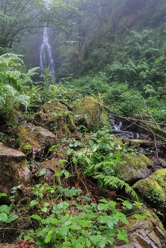 Parque Natural de #Gorbeia #Orozko #DePaseoConLarri #Flickr - -604