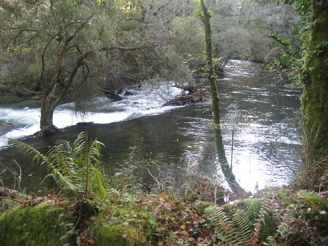 Río Umia PR-G 123 Senda Peonil da Ponte do Ramo