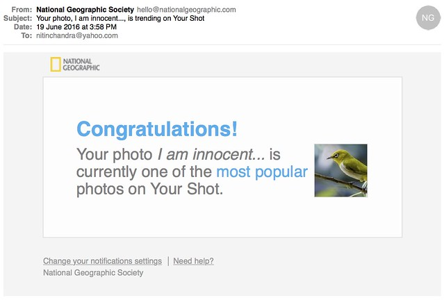 Your photo I am innocent is trending on Your Shot