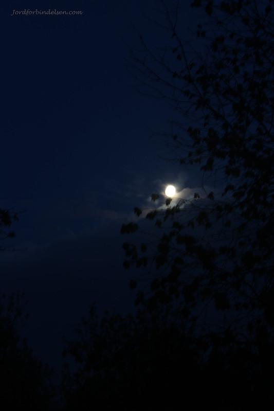 260516Majfuldmåne