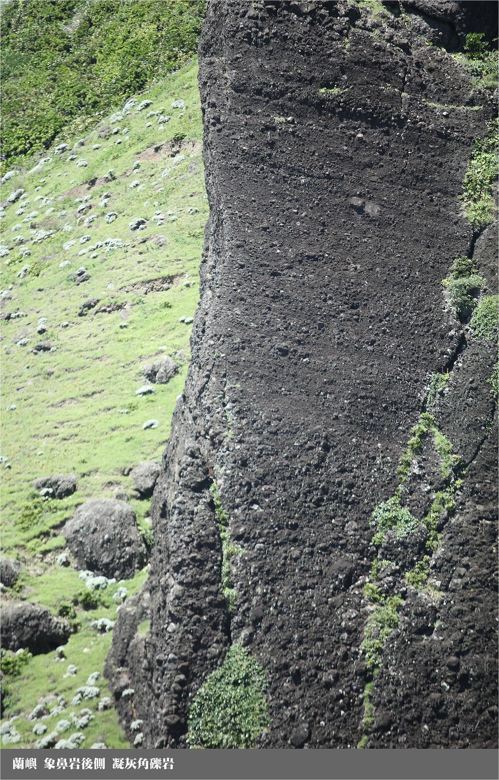 蘭嶼_象鼻岩後側凝灰角礫岩