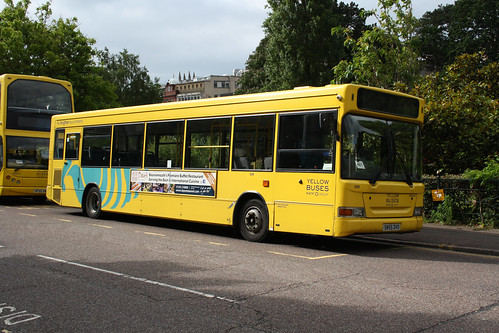 Yellow Buses 509 SN55DVO