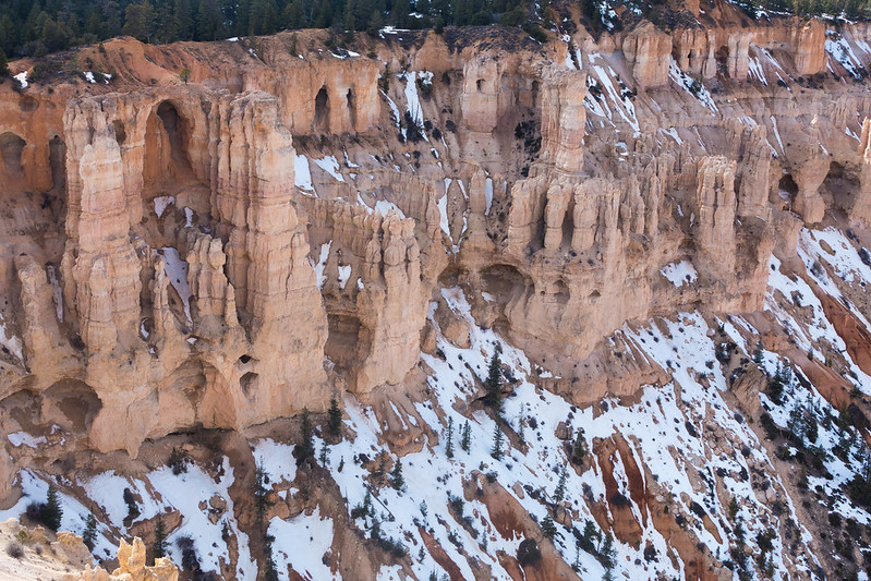 Bryce Canyon-00442