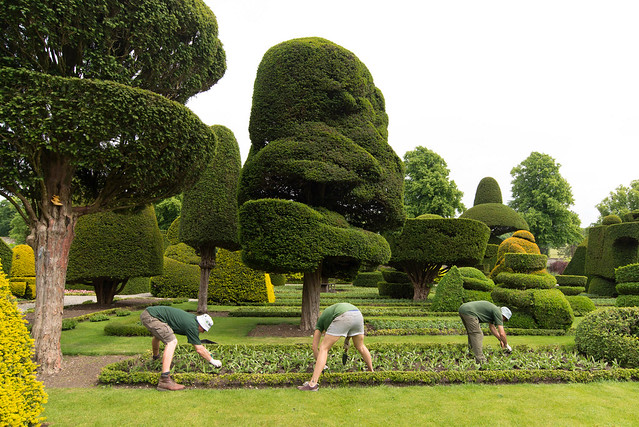 Levels Hall Topiary Garden