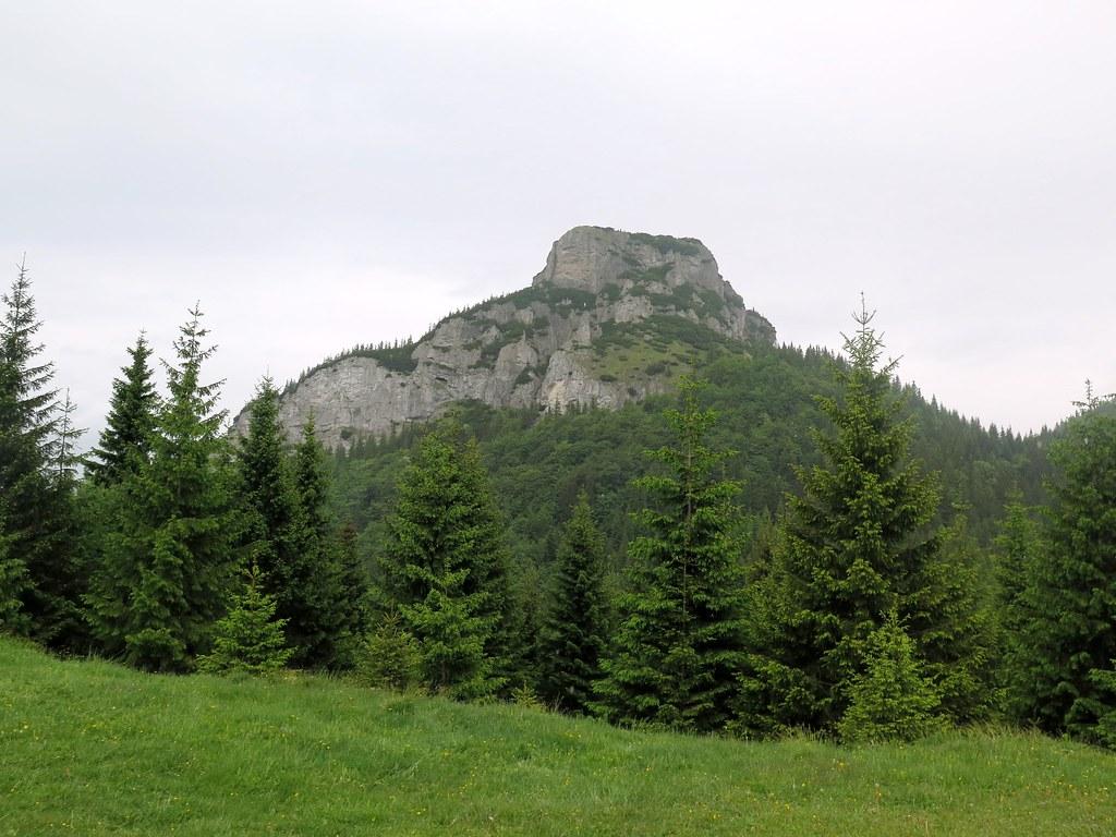 horylesy