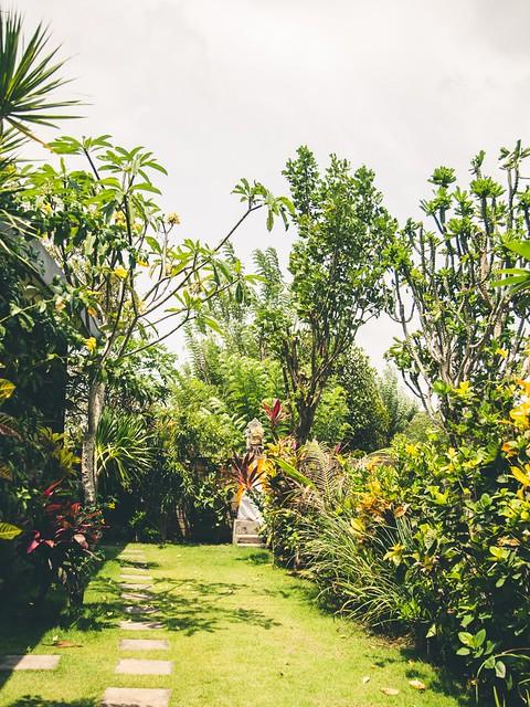 Billeddagbog Bali-1-2
