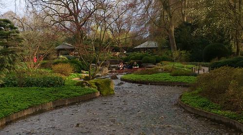 Jardín japonés 2016-04-14 17.35.22