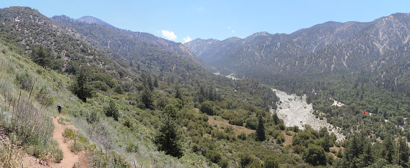 Looking east up the Mill Creek Valley from the Momyer Trail