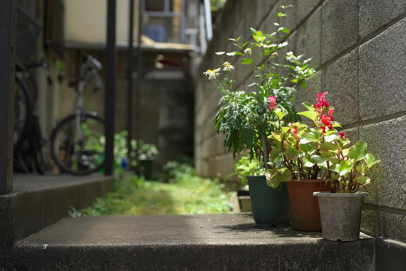 東京路地裏散歩 目黒 2016年6月4日
